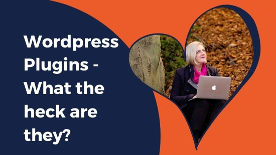 WordPress Plugins – What the heck are they?